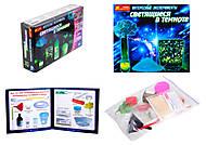 Набор для творчества «Интересные опыты, которые светятся в темноте», 0389-01, интернет магазин22 игрушки Украина