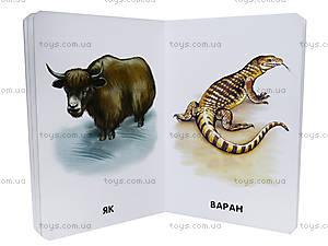 Книга «Прогулка в зоопарке» из серии 22 картинки, А11445У, фото