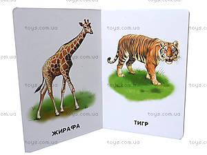 Книга «Прогулка в зоопарке» из серии 22 картинки, А11445У, цена