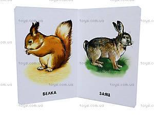 Книжка для детей «22 картинки: Любимые животные», А10965Р, фото