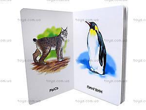 Книжка для детей «22 картинки: Любимые животные», А10965Р, отзывы