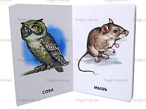 Книжка для детей «22 картинки: Любимые животные», А10965Р, цена