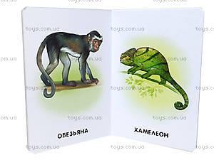 Детская книга в картинках «Прогулка по зоопарку» , А11445Р, фото