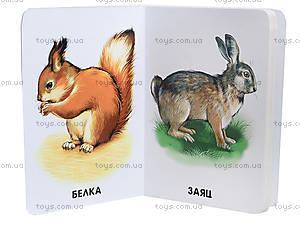 Книжка «22 картинки: Любимые животные», А231021Р, купить