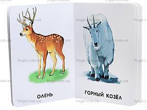 Книжка «22 картинки: Любимые животные», А231021Р, фото