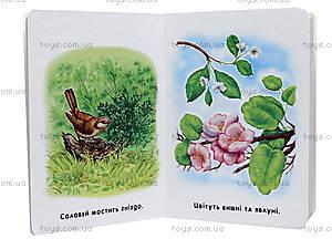 Книга для малышей «22 картинки: Времена года», А231031У, фото