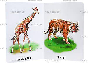 Книга серии 22 картинки «Прогулка зоопарком», А231018У, купить