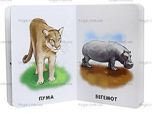 Книга серии 22 картинки «Прогулка зоопарком», А231018У, фото