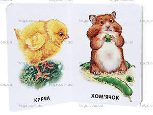 Книга для малышей «22 картинки: Домашние животные», А231029У, купить