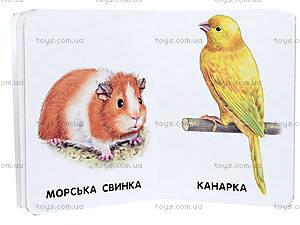 Книга для малышей «22 картинки: Домашние животные», А231029У, фото
