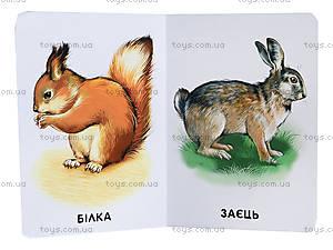 Книжка серии 22 картинки «Любимые животные», А231028У, купить