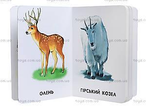 Книжка серии 22 картинки «Любимые животные», А231028У, фото