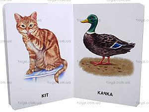Книжка «22 картинки: Домашние животные», А231015У, купить
