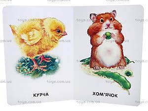 Книжка «22 картинки: Домашние животные», А231015У, отзывы