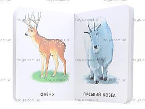 Детская книга «Любимые животные», А231014У, купить