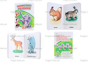 Детская книга «Любимые животные», А231014У