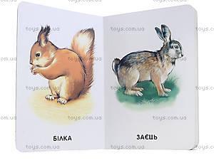 Детская книга «Любимые животные», А231014У, отзывы