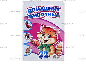 22 картинки «Домашние животные», А231016Р, цена