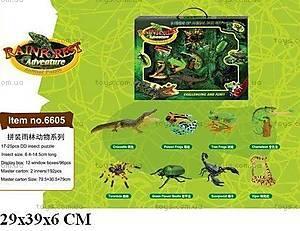 4D пазлы «Тропические животные», 6605