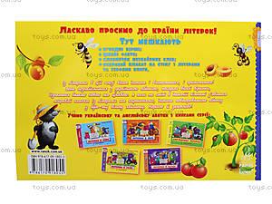 Украинская азбука с плакатом «Буковки в селе», С192004У, купить