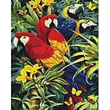 """Алмазная вышивка """"Разноцветные попугаи"""", АМ 6137, набор"""