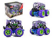 Автобус с большими колесами , MY66-Y1113