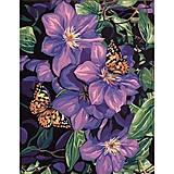 Бабочки на цветах, рисование по номерам, КН129