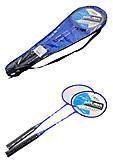 Бадминтон с двумя ракетками в сумке, BT-BPS-0058, купить