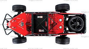 Модель багги Himoto Dirt Whip E10DBL Brushless, E10DBLr, купить