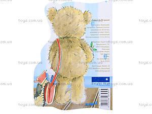 Блокнот А6 Popcorn Bear, , купить
