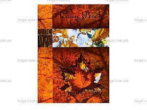 Блокнот с твердой обложкой «Листопад», 160 листов, 1020111, цена