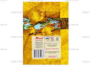 Блокнот с твердой обложкой «Листопад», 160 листов, 1020111, игрушки