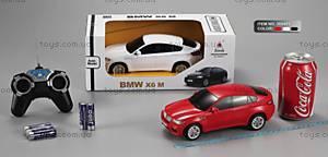 Машина на радиоуправлении BMW X6, 300401