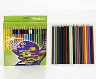 Большой набор цветных карандашей, 4024, фото