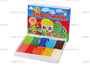 Пластилин для детей «Моя страна», 10 цветов, Ц259016У, цена