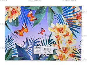 Альбом для рисования «Колибри», 40 листов, Ц260022У, купить