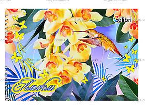 Альбом для рисования «Колибри», 40 листов, Ц260022У, цена