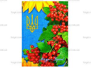 Блокнот в клеточку «Мой дом - Украина», 160 листов, Ц262016У, цена