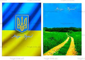 Блокнот твердая обложка «Серия Украина», 160 листов, Ц355014У