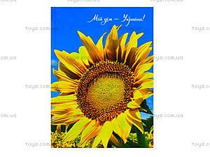 Блокнот твердая обложка «Серия Украина», 160 листов, Ц355014У, отзывы