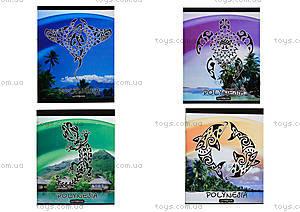 Тетрадь серии «Полинезия», 48 листов, Ц355026У
