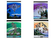 Тетрадь серии «Полинезия», 48 листов, Ц355026У, купить