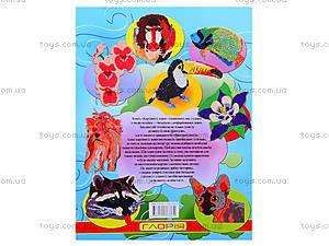 Альбом для творчества «Картины из зерен», 3362, фото