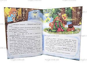 Волшебные истории «В поисках Нового Года», С17602У, игрушки