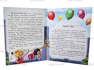 Волшебные истории «Каникулы Деда Мороза», С15995У, купить
