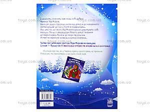 Волшебные истории «Каникулы Деда Мороза», С15995У, фото