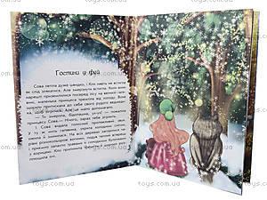 Волшебные истории «В поисках Нового Года», С17602У, купить