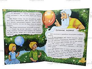 Книга для детей «Волшебные истории: Каникулы Деда Мороза», С15996Р, купить