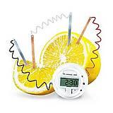 Часы из лимона серии Детская лаборатория, 00-03306, фото