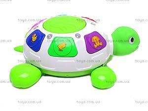 Черепаха музыкальная, ZY6600A, купить
